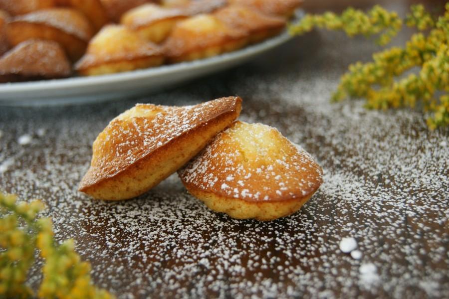 madeleines à la fleur d'oranger