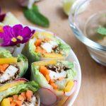 recette rouleaux de printemps végétarien